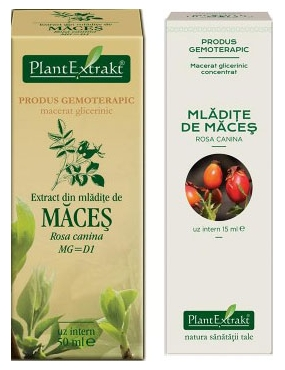 Plant E Extract Mladite de Maces 50ml