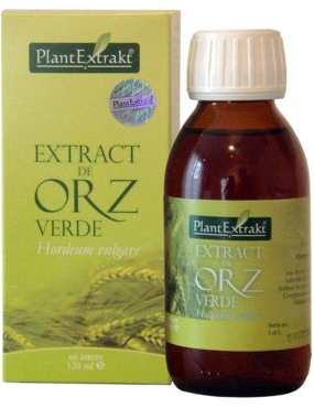 Plant E Extract Orz Verde 120ml