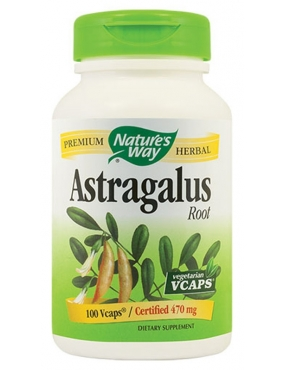 Secom Astragalus Rootx x 100 Natures Way