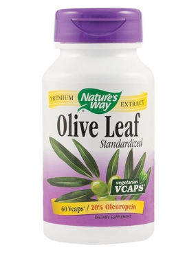Secom Olive Leaf Natures Way