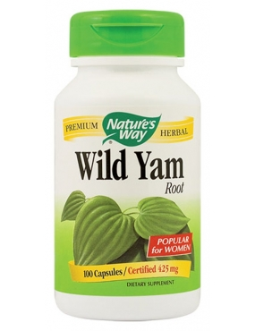 Secom Wild Yam x 100 Natures Way